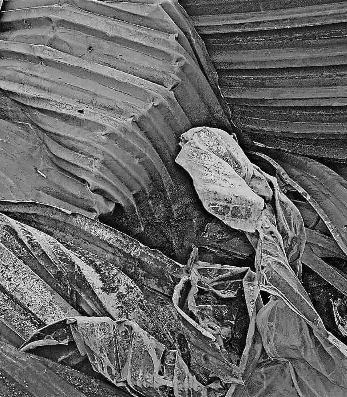 black white abstract photography, steel abstract photo, burned out building, black and white photo, black and white abstract
